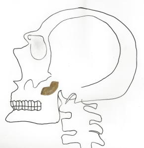 Golden Kiss Skeleton