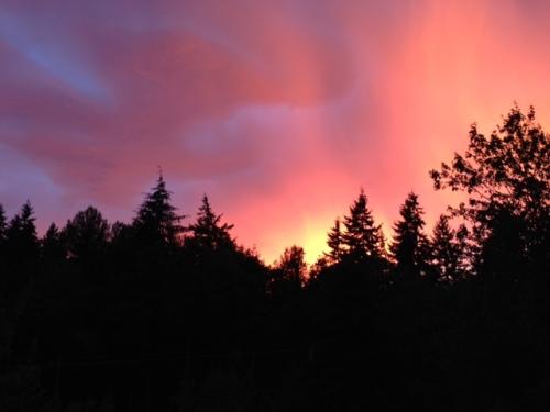 linda's sunrise
