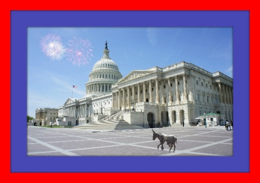 donkey at the Capitol