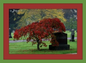 washelli cemetery