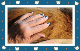 leisure nail paint on sherlock