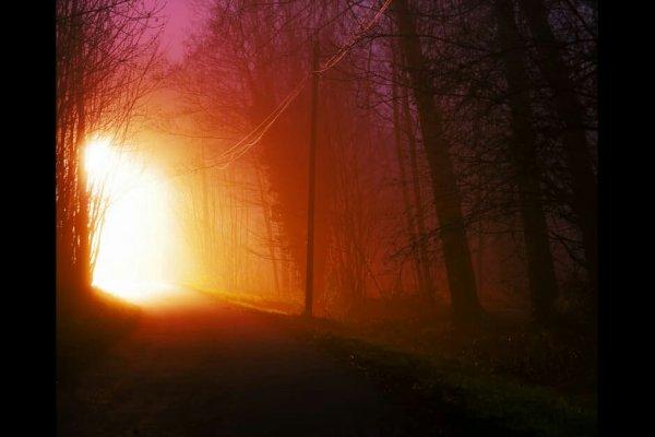 light-road-nature-night_kindlephoto-87473224