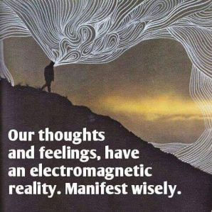 electromagnatic reality